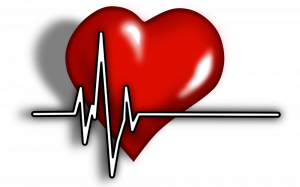 Read more about the article Heart Regeneration: Science Fact or Fiction