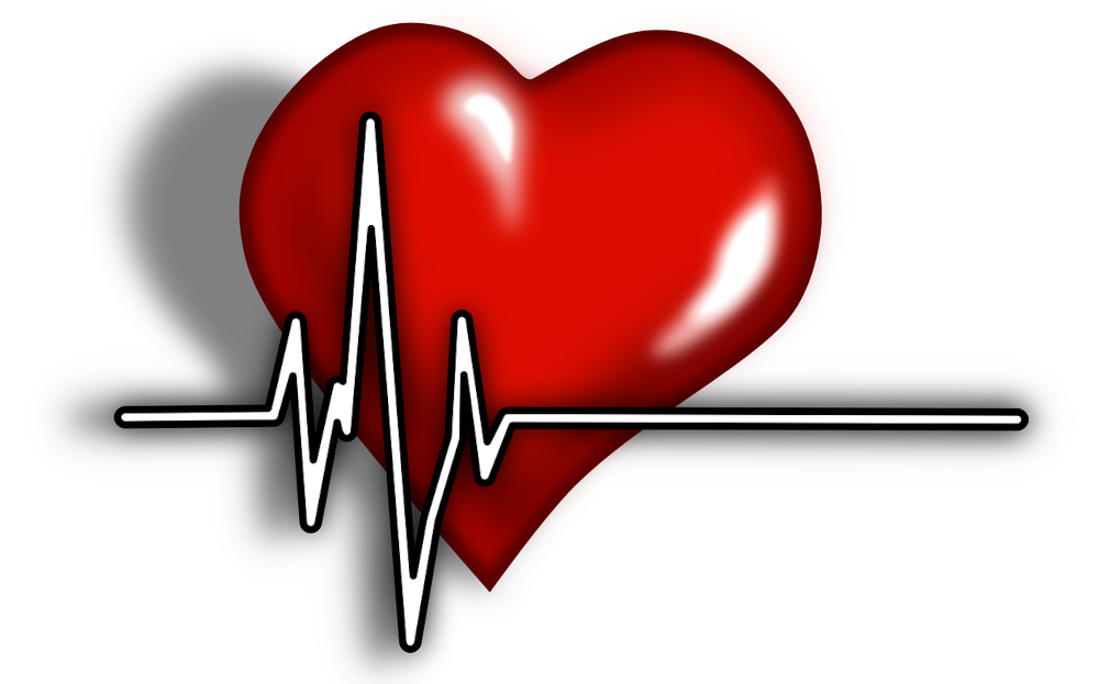 You are currently viewing Heart Regeneration: Science Fact or Fiction